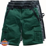 Dickies Industry300 Shorts - IN30050