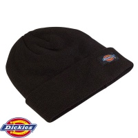 Dickies Thinsulate Watch Cap - HA180
