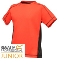 Regatta Kids Beijing T Shirt - TRS179